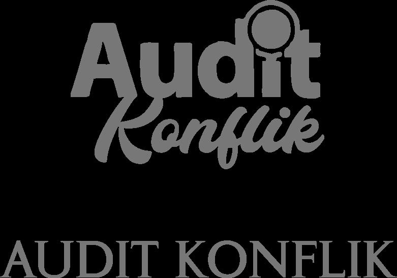 Audit Konflik